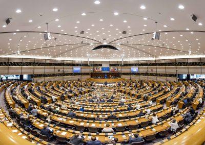 Какъв трябва да е българският евродепутат и какви проблеми трябва да решава? (март 2019)