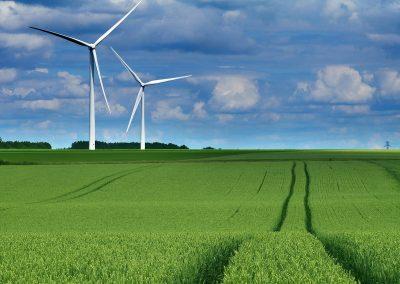 Нагласи на бъгларите спрямо зелени теми и Зелената сделка